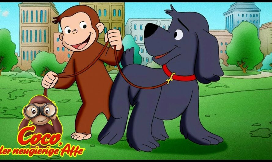 Coco der Hundetrainer